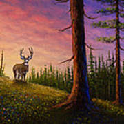 Sunrise Buck Art Print