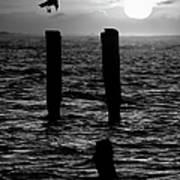 Sunrise Descent Bw - Outer Banks Ocracoke Art Print