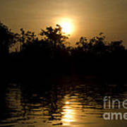 Sunrise In Amazon Art Print