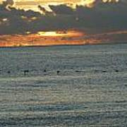 Sunrise In Florida Riviera Art Print