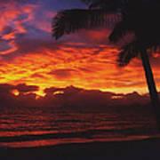 Sunrise In Queensland 2 Art Print