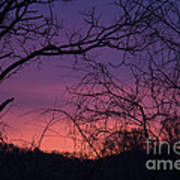 Sunrise January 21 2012 Art Print