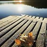 Sunrise Over Leaf On Floating Dock In Art Print