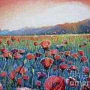Sunrise Poppies Art Print