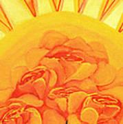 Sunrise Roses Art Print