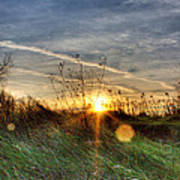 Sunrise Through Grass Art Print by Tim Buisman