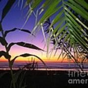 Sunset At Sano Onofre Art Print