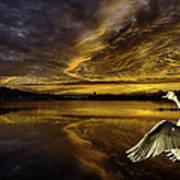 Sunset At Swan Lake  Art Print