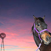 Sunset At The Farm Art Print
