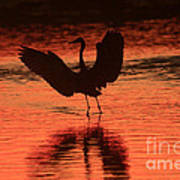 Sunset Dancer Art Print