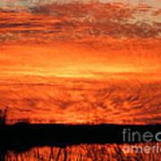 Sunset Detail  Art Print