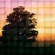 Sunset Grid 2 Art Print