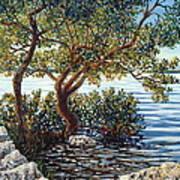 Sunset On Morada Bay Art Print