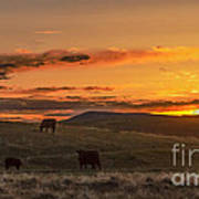 Sunset On Open Range Art Print