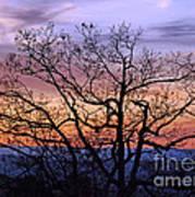 Sunset On Tanners Ridge Art Print