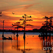 Sunset On The Bayou Art Print