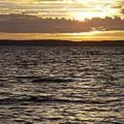 Sunset Over Lake Cazaux Art Print