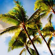 Sunset Palm Trees Art Print