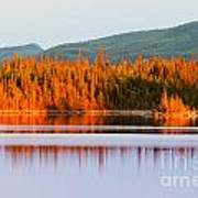 Sunset Reflections On Boreal Forest Lake In Yukon Art Print
