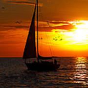 Sunset Sail Venice Florida Art Print