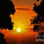 Sunset Silhouette By Diana Sainz Art Print