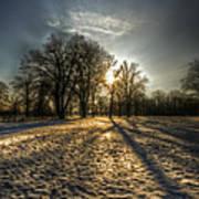 Sunset Snow Trees Art Print