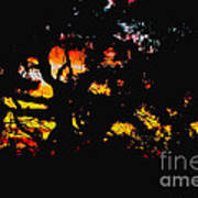 Sunset Viewed Through A Tree Art Print