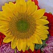 Sunshine Bouquet Art Print