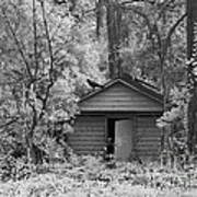 Sureal Gothic Infrared Woodlands Haunting Spooky Eerie Old Building With Black Ravens Art Print
