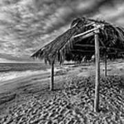 Surf Shack - Black And White Print by Peter Tellone