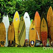 Surfboard Fence Maui Art Print