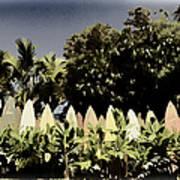 Surfboard Fence - Old Postcard Art Print