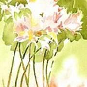 Surprise Lilies IIi A Portrait Art Print