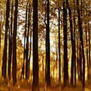 Surreal Autumn Art Print