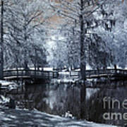 Surreal Dreamy Fantasy Nature Infrared Landscape - Edisto Park South Carolina Art Print