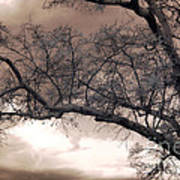 Surreal Fantasy Gothic South Carolina Oak Trees Art Print by Kathy Fornal