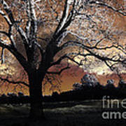 Surreal Fantasy Gothic Trees Nature Sunset Art Print by Kathy Fornal