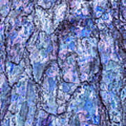 Surreal Patterned Bark In Blue Art Print