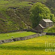 Swaledale Landscape Art Print