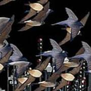 Swallows In The City Art Print