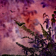 Swallowtail In The Butterfly Bush - Featured In The Wildlife And Comfortable Art And Newbies Groups Art Print