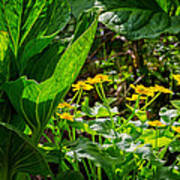 Swamp Bouquet Art Print