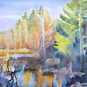 Swamp Color Art Print by Grace Keown