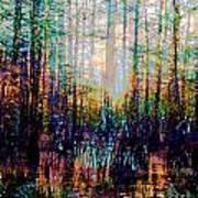 Swamp Colorfest Art Print