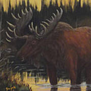 Swamp Moose Art Print