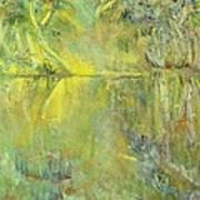 Swamp Sun Art Print