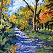 Swan Creek Pathway Art Print