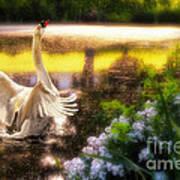 Swan Lake Art Print by Lois Bryan