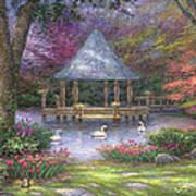 Swan Pond Art Print by Chuck Pinson