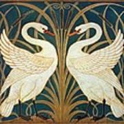 Swan Rush And Iris Art Print